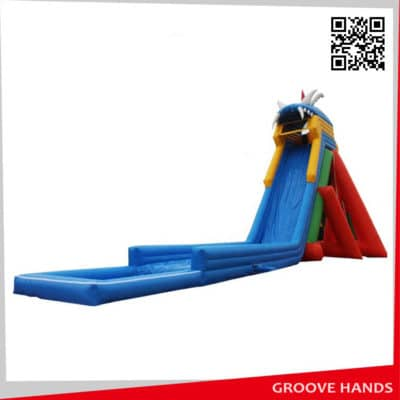 Large Inflatable Water Slide for Adult with Pool (BG01)